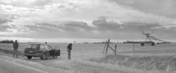 Nebraska 2: Birdman [anàlisi]