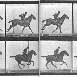Un pla seqüència de 100 anys